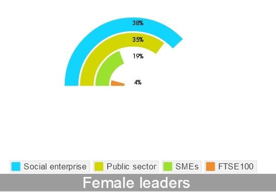 Women and social enterprise (2)